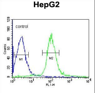 MGST2 Antibody - MGST2 Antibody flow cytometry of HepG2 cells (right histogram) compared to a negative control cell (left histogram). FITC-conjugated goat-anti-rabbit secondary antibodies were used for the analysis.