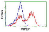 HEK293T cells transfected with either overexpress plasmid (Red) or empty vector control plasmid (Blue) were immunostained by anti-MIPEP antibody, and then analyzed by flow cytometry.