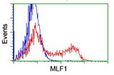 HEK293T cells transfected with either overexpress plasmid (Red) or empty vector control plasmid (Blue) were immunostained by anti-MLF1 antibody, and then analyzed by flow cytometry.