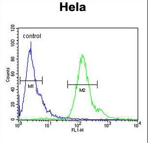 MMGT1 Antibody flow cytometry of HeLa cells (right histogram) compared to a negative control cell (left histogram). FITC-conjugated goat-anti-rabbit secondary antibodies were used for the analysis.