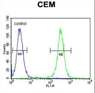 MNDA Antibody - MNDA Antibody flow cytometry of CEM cells (right histogram) compared to a negative control cell (left histogram). FITC-conjugated goat-anti-rabbit secondary antibodies were used for the analysis.