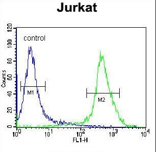 MOGAT3 Antibody - MOGT3 Antibody flow cytometry of Jurkat cells (right histogram) compared to a negative control cell (left histogram). FITC-conjugated donkey-anti-rabbit secondary antibodies were used for the analysis.