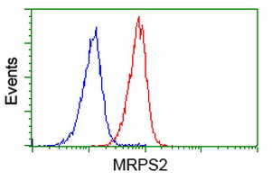 MRPS2 Antibody - Flow cytometry of Jurkat cells, using anti-MRPS2 antibody (Red), compared to a nonspecific negative control antibody (Blue).