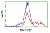 HEK293T cells transfected with either overexpress plasmid (Red) or empty vector control plasmid (Blue) were immunostained by anti-MRPS27 antibody, and then analyzed by flow cytometry.