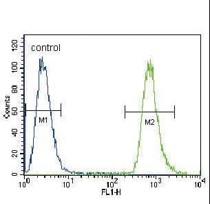 NEU2 Antibody flow cytometry of A549 cells (right histogram) compared to a negative control cell (left histogram). FITC-conjugated goat-anti-rabbit secondary antibodies were used for the analysis.
