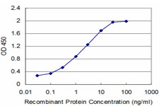 Neuropeptide Y / NPY Antibody - Detection limit for recombinant GST tagged NPY is approximately 0.03 ng/ml as a capture antibody.