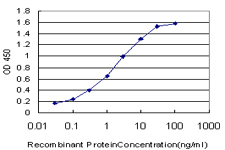 Detection limit for recombinant GST tagged NFYB is approximately 0.1 ng/ml as a capture antibody.