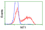 HEK293T cells transfected with either pCMV6-ENTRY NIT1 (Red) or empty vector control plasmid (Blue) were immunostained with anti-NIT1 mouse monoclonal, and then analyzed by flow cytometry.