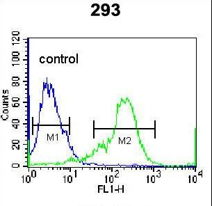 NKX1-2 Antibody flow cytometry of 293 cells (right histogram) compared to a negative control cell (left histogram). FITC-conjugated goat-anti-rabbit secondary antibodies were used for the analysis.