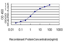 Detection limit for recombinant GST tagged NKX2-5 is approximately 0.03 ng/ml as a capture antibody.