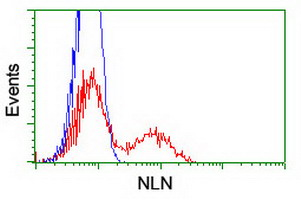 HEK293T cells transfected with either overexpress plasmid (Red) or empty vector control plasmid (Blue) were immunostained by anti-NLN antibody, and then analyzed by flow cytometry.