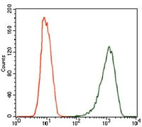NOS2 / iNOS Antibody - Flow Cytometry: iNOS Antibody (4E5) - Flow cytometric analysis of MCF-7 cells using iNOS mouse mAb (green) and negative control (red).