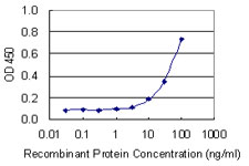 NOS3 / eNOS Antibody - Detection limit for recombinant GST tagged NOS3 is 3 ng/ml as a capture antibody.