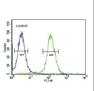 NPFF Antibody - NPFF Antibody flow cytometry of 293 cells (right histogram) compared to a negative control cell (left histogram). FITC-conjugated goat-anti-rabbit secondary antibodies were used for the analysis.