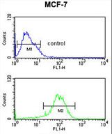 NR1H3 Antibody flow cytometry of MCF-7 cells (bottom histogram) compared to a negative control cell (top histogram). FITC-conjugated goat-anti-rabbit secondary antibodies were used for the analysis.