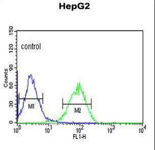 NR5A1 Antibody flow cytometry of HepG2 cells (right histogram) compared to a negative control cell (left histogram). FITC-conjugated goat-anti-rabbit secondary antibodies were used for the analysis.