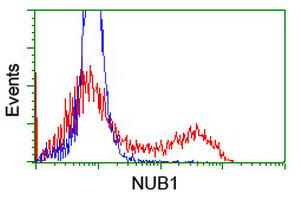 HEK293T cells transfected with either overexpress plasmid (Red) or empty vector control plasmid (Blue) were immunostained by anti-NUB1 antibody, and then analyzed by flow cytometry.