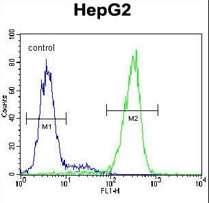 NUDT15 Antibody - NUDT15 Antibody flow cytometry of HepG2 cells (right histogram) compared to a negative control cell (left histogram). FITC-conjugated goat-anti-rabbit secondary antibodies were used for the analysis.
