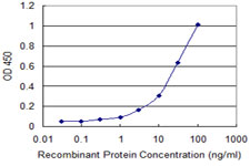 Detection limit for recombinant GST tagged NUDT2 is approximately 0.3 ng/ml as a capture antibody.