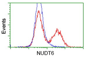 HEK293T cells transfected with either overexpress plasmid (Red) or empty vector control plasmid (Blue) were immunostained by anti-NUDT6 antibody, and then analyzed by flow cytometry.
