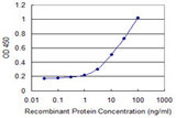 Detection limit for recombinant GST tagged NXF3 is 0.3 ng/ml as a capture antibody.