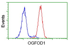 Flow cytometry of HeLa cells, using anti-OGFOD1 antibody (Red), compared to a nonspecific negative control antibody (Blue).