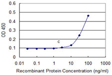 Detection limit for recombinant GST tagged OMG is approximately 10 ng/ml as a capture antibody.