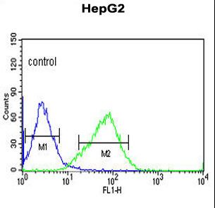OR2H2 Antibody flow cytometry of HepG2 cells (right histogram) compared to a negative control cell (left histogram). FITC-conjugated goat-anti-rabbit secondary antibodies were used for the analysis.