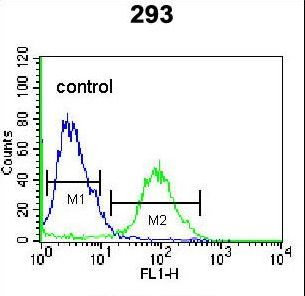 OR4F15 Antibody - OR4F15 Antibody flow cytometry of 293 cells (right histogram) compared to a negative control cell (left histogram). FITC-conjugated goat-anti-rabbit secondary antibodies were used for the analysis.