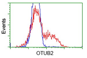 OTUB2 Antibody - HEK293T cells transfected with either overexpress plasmid (Red) or empty vector control plasmid (Blue) were immunostained by anti-OTUB2 antibody, and then analyzed by flow cytometry.