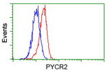 Flow cytometry of HeLa cells, using anti-PYCR2 antibody, (Red), compared to a nonspecific negative control antibody, (Blue).