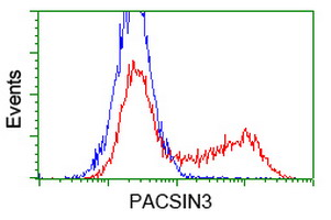 HEK293T cells transfected with either overexpress plasmid (Red) or empty vector control plasmid (Blue) were immunostained by anti-PACSIN3 antibody, and then analyzed by flow cytometry.