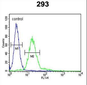 MPP6 Antibody flow cytometry of 293 cells (right histogram) compared to a negative control cell (left histogram). FITC-conjugated goat-anti-rabbit secondary antibodies were used for the analysis.