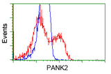 HEK293T cells transfected with either overexpress plasmid (Red) or empty vector control plasmid (Blue) were immunostained by anti-PANK2 antibody, and then analyzed by flow cytometry.