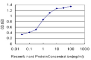 Detection limit for recombinant GST tagged PALM is approximately 0.03 ng/ml as a capture antibody.
