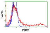 HEK293T cells transfected with either overexpress plasmid (Red) or empty vector control plasmid (Blue) were immunostained by anti-PBX1 antibody, and then analyzed by flow cytometry.