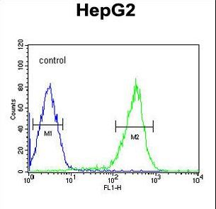 PCBD1 / PHS Antibody - PCBD1 Antibody flow cytometry of HepG2 cells (right histogram) compared to a negative control cell (left histogram). FITC-conjugated goat-anti-rabbit secondary antibodies were used for the analysis.