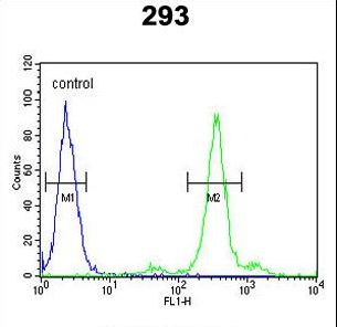 PGD Antibody - PGD Antibody flow cytometry of 293 cells (right histogram) compared to a negative control cell (left histogram). FITC-conjugated goat-anti-rabbit secondary antibodies were used for the analysis.