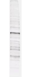 Phosphothreonine Antibody - Anti-Phosphothreonine Antibody - Western Blot. Mab anti-phosphothreonine antibody (clone 18F6) is shown to detect threonine phosphorylation of proteins in a lysate from A431 cells stimulated with EGF. Separation is achieved under reducing conditions using a pre-cast 4-20% iGel from Gradipore, Inc. A 1:1000 dilution of Mab anti-phosphothreonine is used for 30 min followed by detection using a 1:2500 dilution of IRDye 800 conjugated Goat-a-Mouse IgG [H&L] ( and visualization using the Odyssey Infrared Imaging System developed by LI-COR. Other detection systems will yield similar results. IRDye is a trademark of LI-COR, Inc.