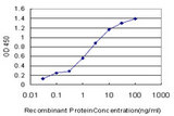 Detection limit for recombinant GST tagged PRKG1 is approximately 0.1 ng/ml as a capture antibody.