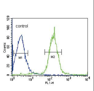 PLA2G6 / IPLA2 Antibody - PLA2G6 Antibody flow cytometry of HepG2 cells (right histogram) compared to a negative control cell (left histogram). FITC-conjugated goat-anti-rabbit secondary antibodies were used for the analysis.