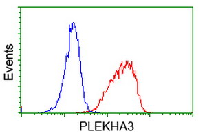 PLEKHA3 Antibody - Flow cytometry of Jurkat cells, using anti-PLEKHA3 antibody (Red), compared to a nonspecific negative control antibody (Blue).
