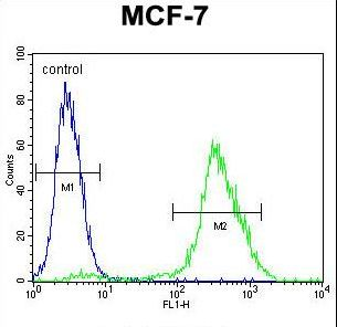 PMPCA Antibody - PMPCA Antibody flow cytometry of MCF-7 cells (right histogram) compared to a negative control cell (left histogram). FITC-conjugated goat-anti-rabbit secondary antibodies were used for the analysis.