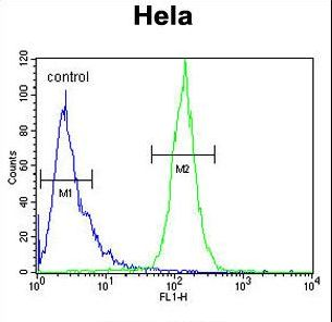 PPIC Antibody flow cytometry of HeLa cells (right histogram) compared to a negative control cell (left histogram). FITC-conjugated goat-anti-rabbit secondary antibodies were used for the analysis.