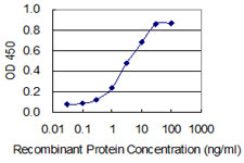 PPP1R8 / Rnase E Antibody - Detection limit for recombinant GST tagged PPP1R8 is 0.1 ng/ml as a capture antibody.