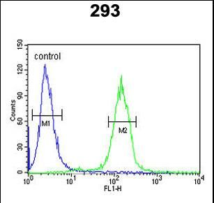 PPP3R1 Antibody (N-term) flow cytometric analysis of 293 cells (right histogram) compared to a negative control cell (left histogram).FITC-conjugated goat-anti-rabbit secondary antibodies were used for the analysis.