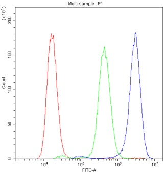 PROC / Protein C Antibody - Flow Cytometry analysis of A549 cells using anti-PROC antibody. Overlay histogram showing A549 cells stained with anti-PROC antibody (Blue line). The cells were blocked with 10% normal goat serum. And then incubated with rabbit anti-PROC Antibody (1µg/10E6 cells) for 30 min at 20°C. DyLight®488 conjugated goat anti-rabbit IgG (5-10µg/10E6 cells) was used as secondary antibody for 30 minutes at 20°C. Isotype control antibody (Green line) was rabbit IgG (1µg/10E6 cells) used under the same conditions. Unlabelled sample (Red line) was also used as a control.