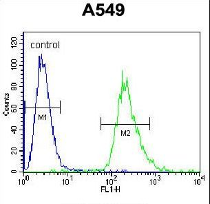 PRR19 Antibody - PRR19 Antibody flow cytometry of A549 cells (right histogram) compared to a negative control cell (left histogram). FITC-conjugated goat-anti-rabbit secondary antibodies were used for the analysis.