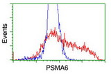 HEK293T cells transfected with either overexpress plasmid (Red) or empty vector control plasmid (Blue) were immunostained by anti-PSMA6 antibody, and then analyzed by flow cytometry.