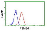 Flow cytometry of Jurkat cells, using anti-PSMB4 antibody (Red), compared to a nonspecific negative control antibody (Blue).